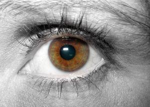 876700_brown_eye